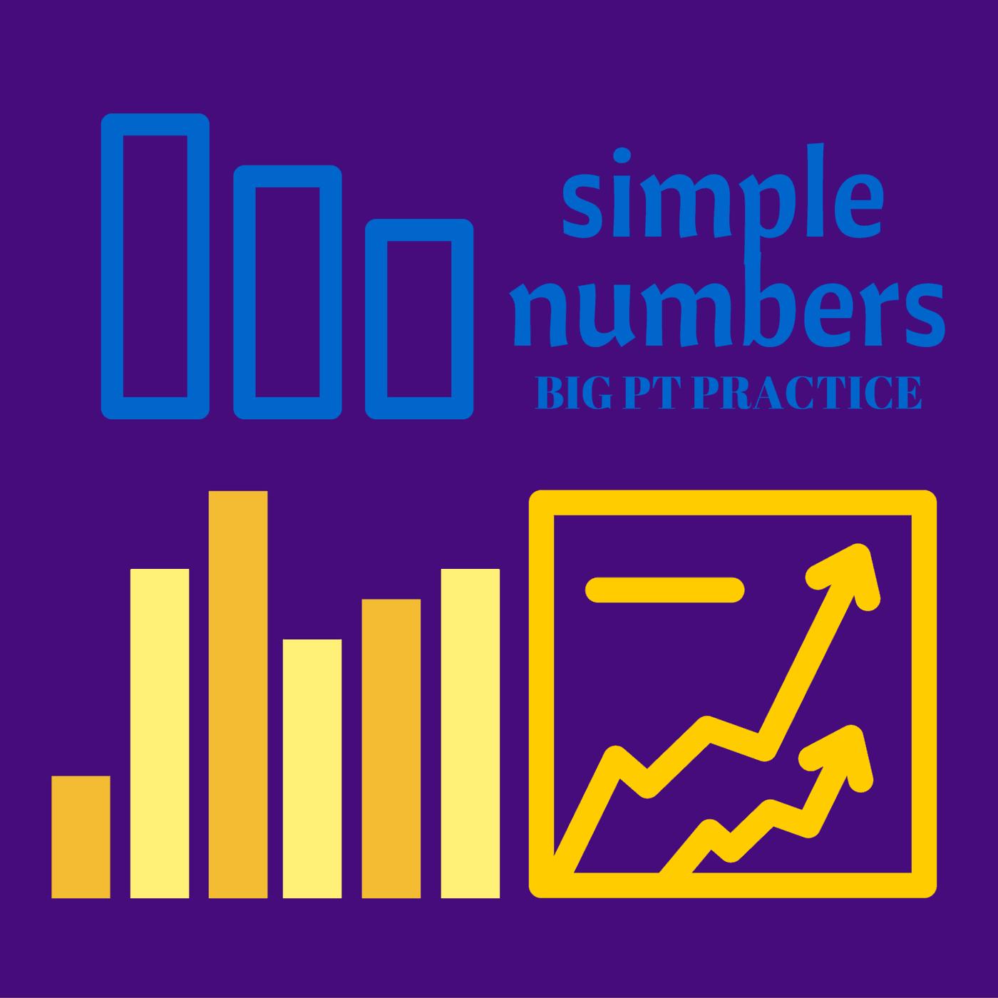 simple numbers big PT practice